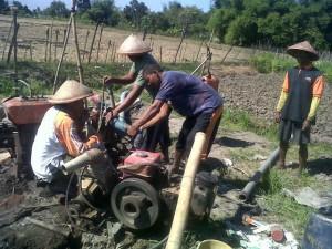 Petani Bawang Merah, Pertanyakan Sikap Menteri Pertanian Amran Sulaiman