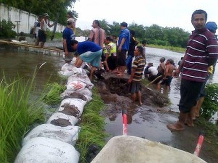 Banjir Meluas, Lima Kecamatan di Jombang Diterjang Banjir