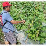 Tangki Pintar Temuan Petani Nganjuk Siap Bersaing dengan Produk Pabrikan
