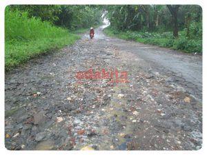 Kondisi Jalan di Desa Ngembul Kecamatan Butuh Perhatian Serius