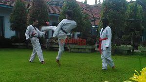 Berawal Dari Ikut-Ikutan, Sampai Jadi Juara Taekwondo