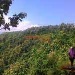 Goa Jepang, Destinasi Wisata Baru Di Perbukitan Kabupaten Jombang