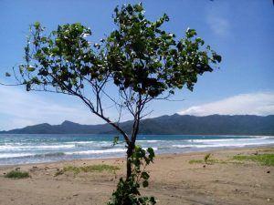 Menikmati Keindahan Pantai Blado Trenggalek