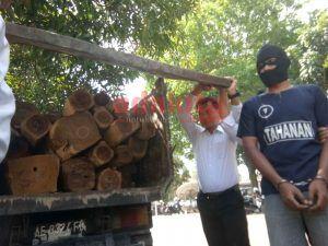 Polisi Amankan 66 Batang Kayu Jati dan Sono Tanpa Dokumen Resmi