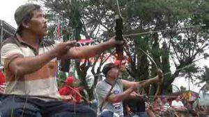 Panahan Tradisional Masih Didominasi Kalangan Tua