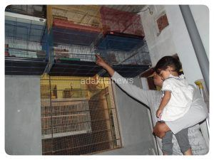 Sudut rumah bagian dalam juga yang juga dipakai Yudi untuk memelihara Love Bird.