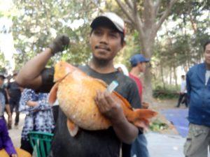 Grobyak Suro Ribuan Warga Tanjung Berebut Ikan Di Sumber Gundi