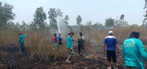 Kebakaran Di Kawasan Hutan Puncu Habiskan 2 Hektar Lahan
